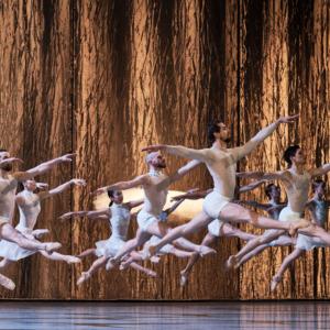 LE LAC DES CYGNES Ballet de l'Opéra national du Rhin