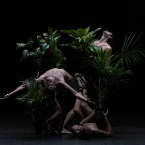 PARADISO – Virgilio Sieni